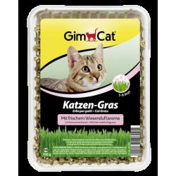 GimCat Katzen-Gras mit...