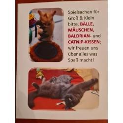 Spielsachen für alle Katzen