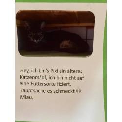 Katzenmädl Pixi